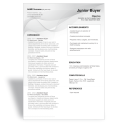 CV Junior Buyer