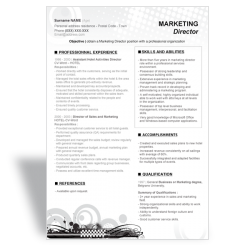 CV Marketing Director