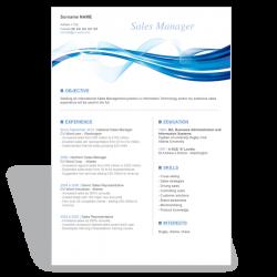 Résumé CV Sales Manager