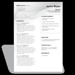 CV Junior Buyer