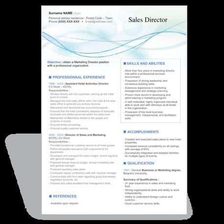 Word CV Résumé template Sales Director