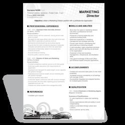 CV Marketing Director